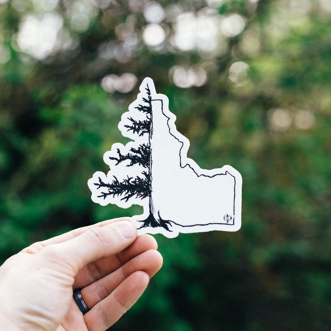 IdaTree Sticker