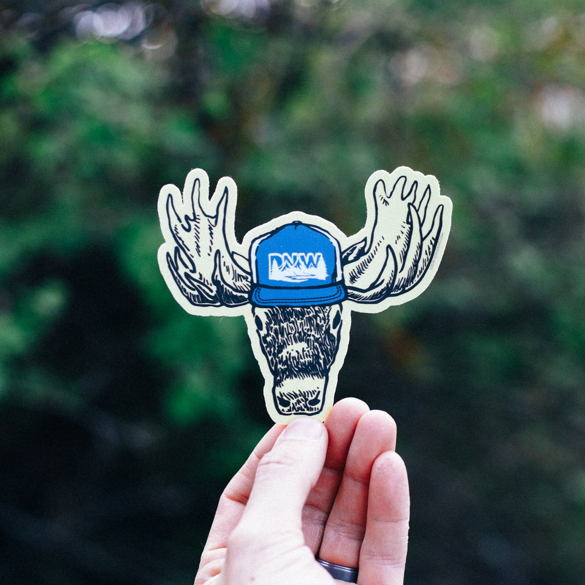PNW Moose Sticker