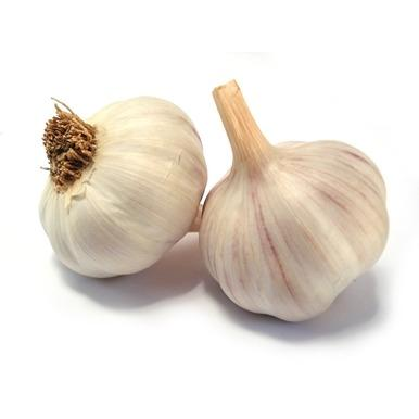 Local Red Russian Garlic (per pound)