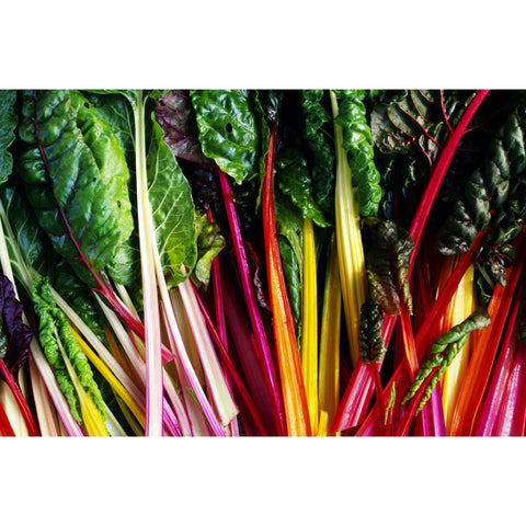 Organic Red or Rainbow Chard