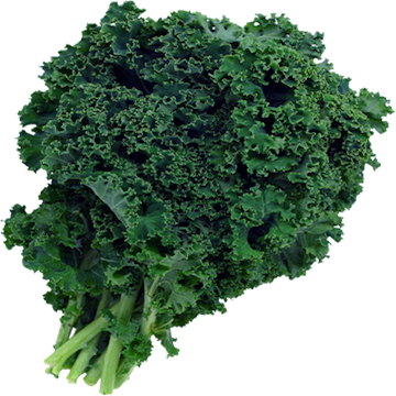 Green Kale Local