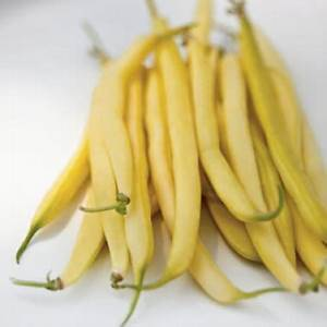 Local Wax Beans (per pound)