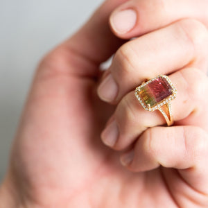 Liven Co <br>Multicolored Tourmaline Ring