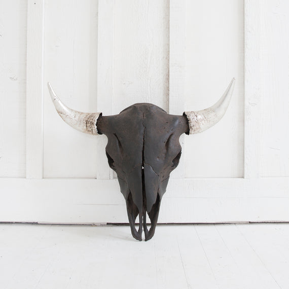 Black Bison Skull, Silver Horns