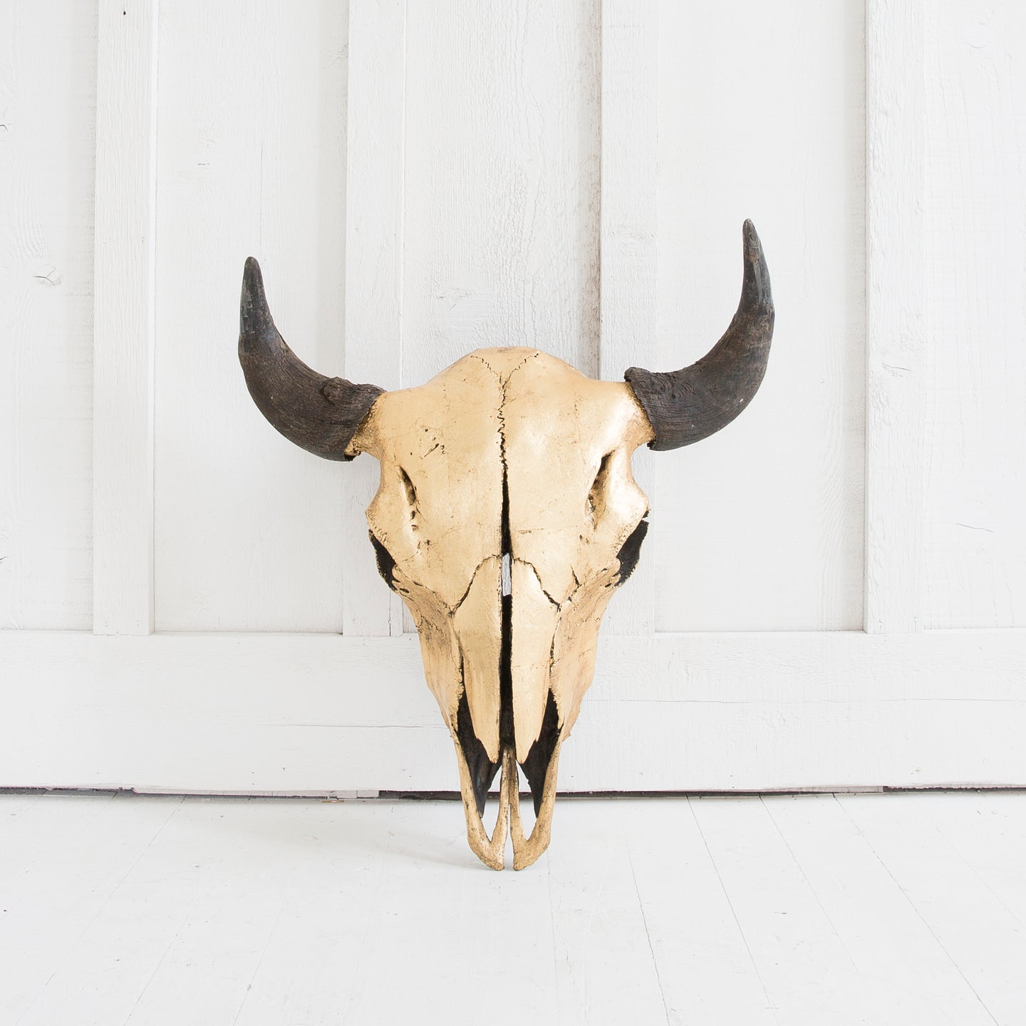 Gold Bison Skull, Natural Horns