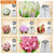BakersTech® Floral Piping Nozzles - Decorating Kit