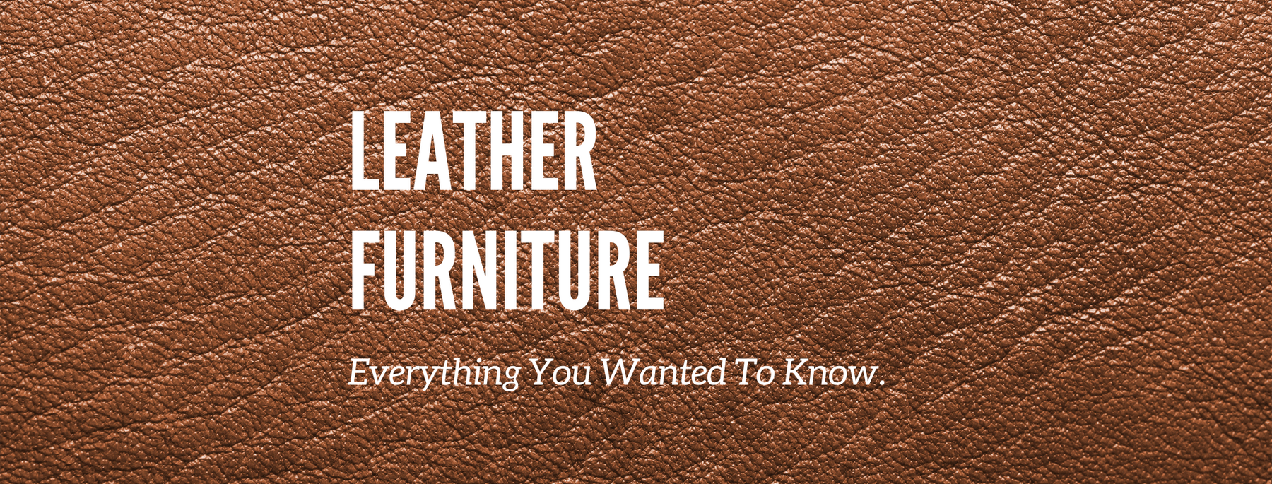 Leather Furniture: Everything You Wanted to Know