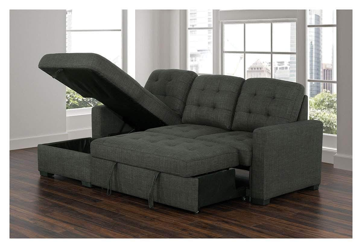 - Dexter Sleeper Sectional Sofa Bed With Loveseat And Storage Chaise