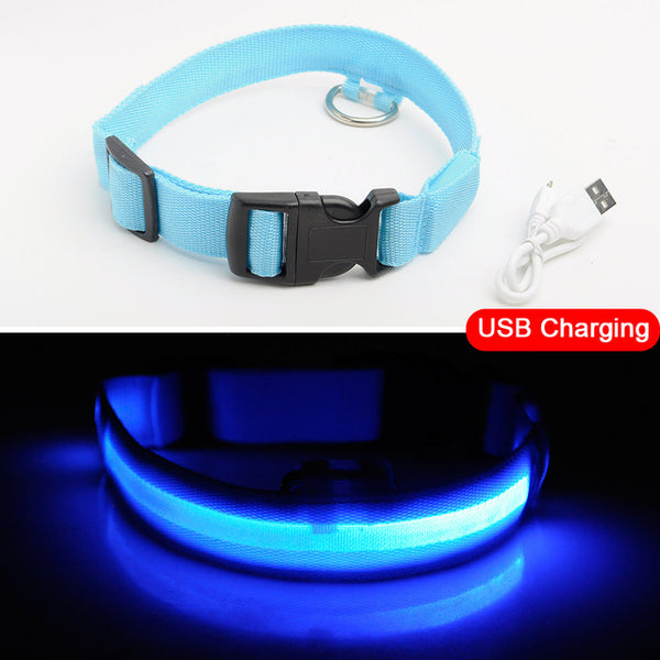 Brand New High Tech LED / Light Up Dog Collar – USB, Fiber Optic
