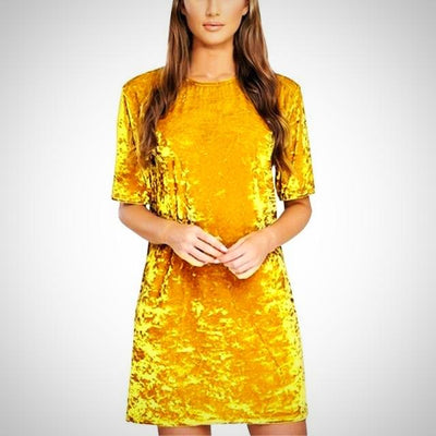 Round Neck Short Sleeve Velvet Party Dress