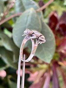 La Rana sterling silver ring
