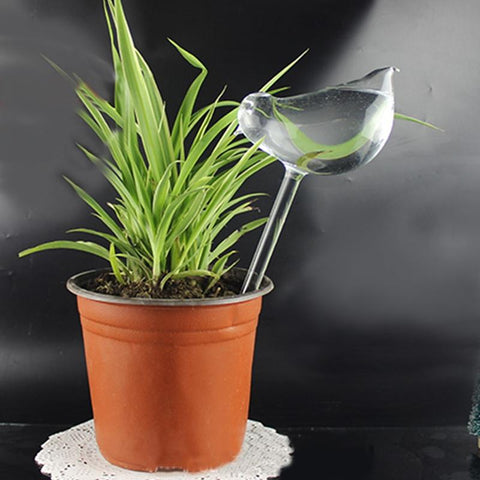 Self Watering Plant Bird Device