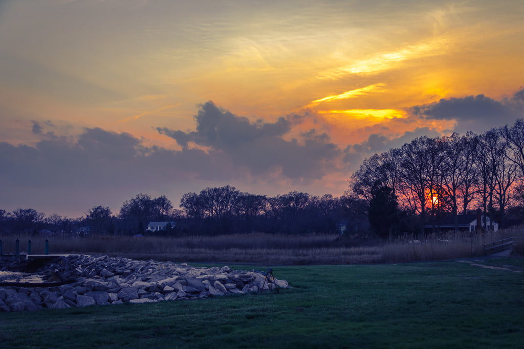 Snug Harbor Sunset I
