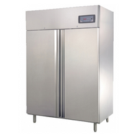 Commercial Upright Freezer 2 Door 1200L 304 Stainless Steel