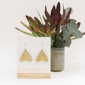 Chlorodes boisduvalaria green Australian moth earrings wooden jewellery