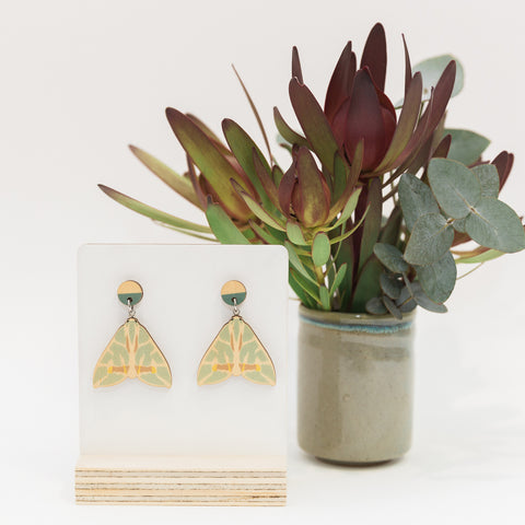 Chlorodes boisduvalaria green Australian made moth earrings wooden jewellery