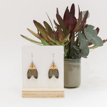 Load image into Gallery viewer, Amerila nigropunctata blue Australian made moth earrings wooden jewellery
