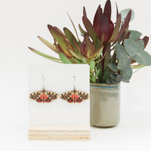 Load image into Gallery viewer, Spilosoma erythrastis red Australian moth earrings wooden jewellery