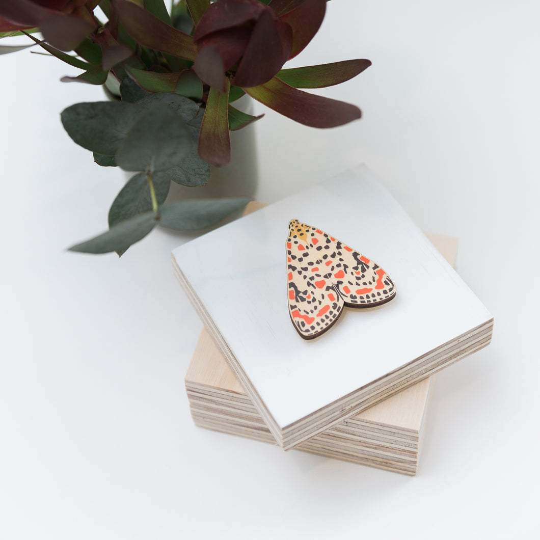 Utetheisa pulchelloides red spotted Australian made moth brooch wooden jewellery
