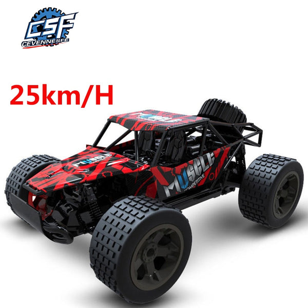 RC Cars Radio Control 2.4G 4CH rock car Toys Buggy Off-Road Truck - Sell-off