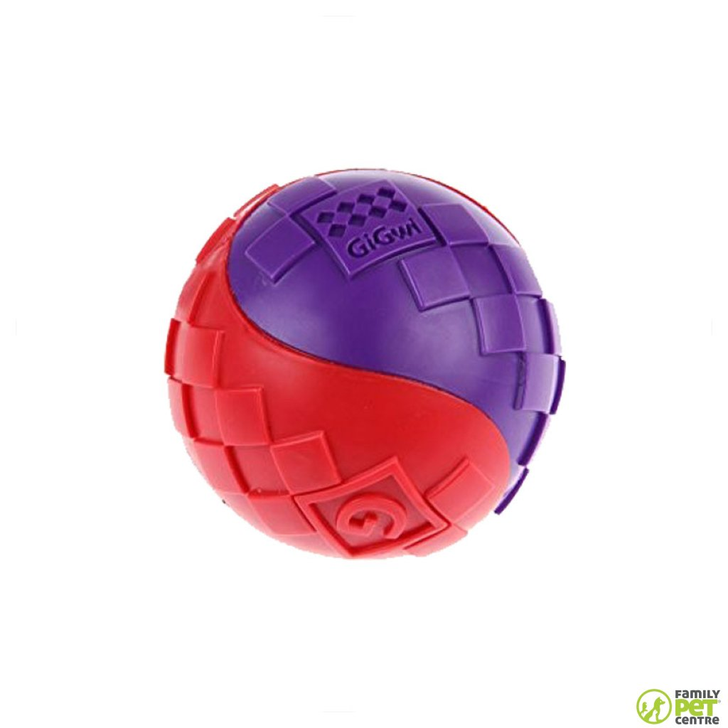 Gigwi Ball Squeaker Toy
