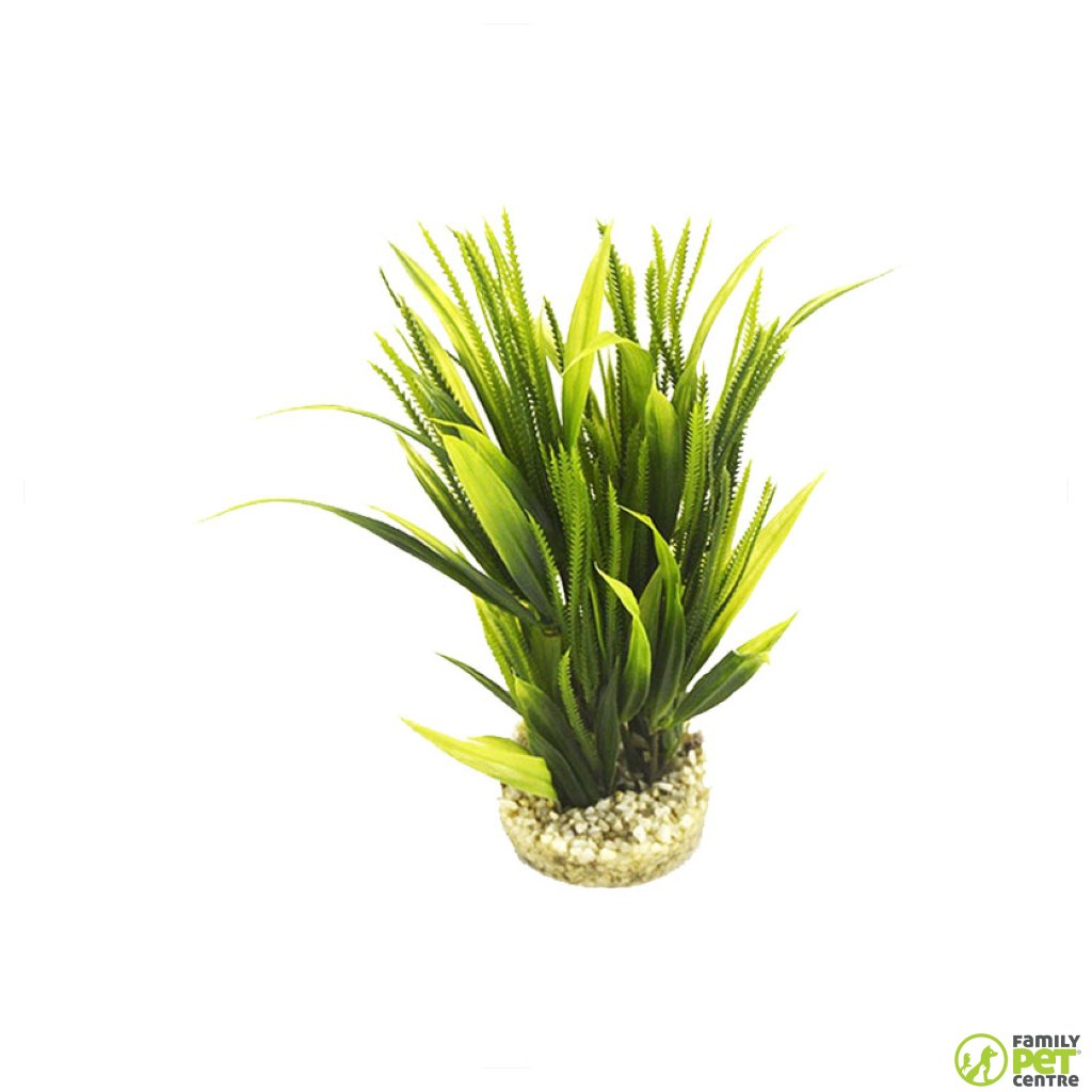 Sydeco Tropical Grass