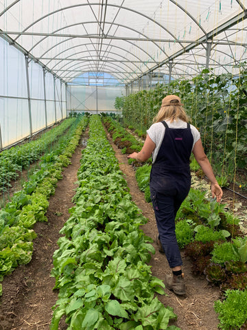 Regenerative agriculture Common Ground Project