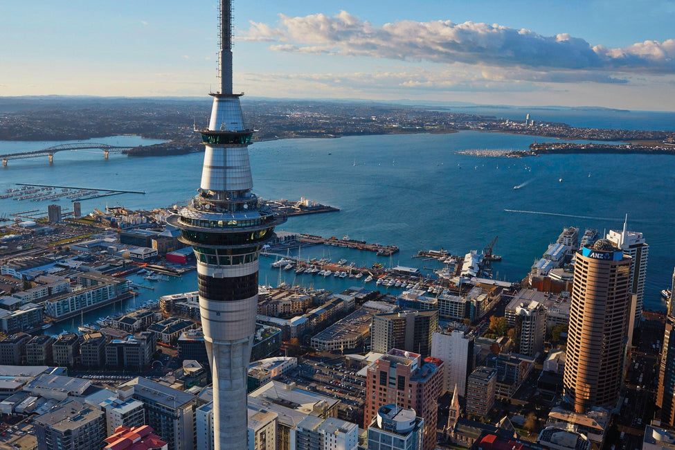 Auckland Sky Tower + Hop On Hop Off Combo