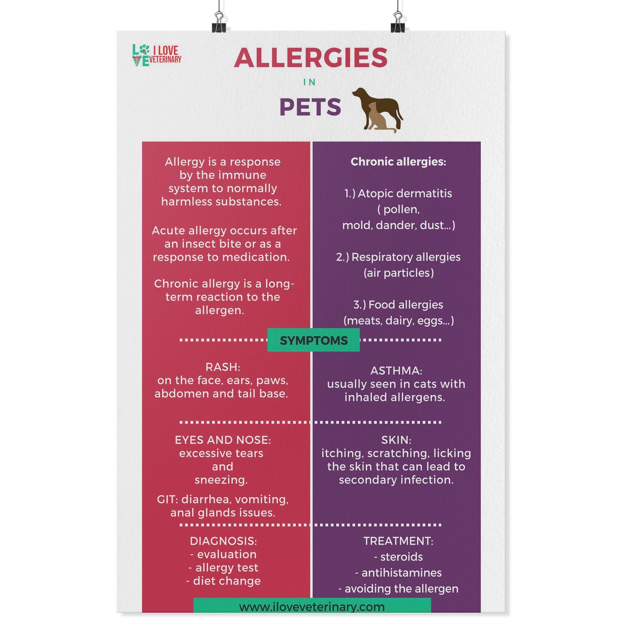 Allergies in Pets Poster-Posters 2-I love Veterinary