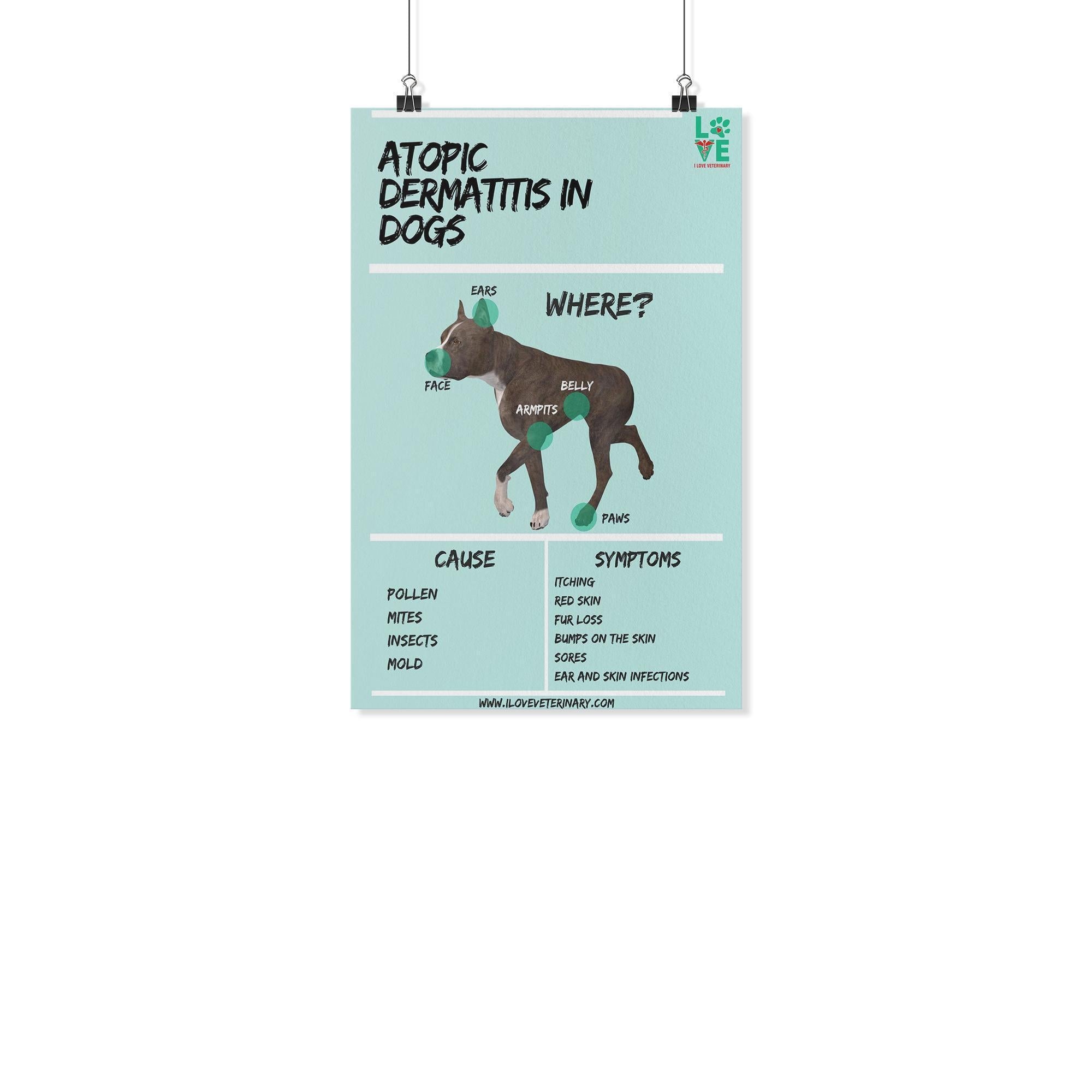 Atopic Dermatitis in Dogs Poster