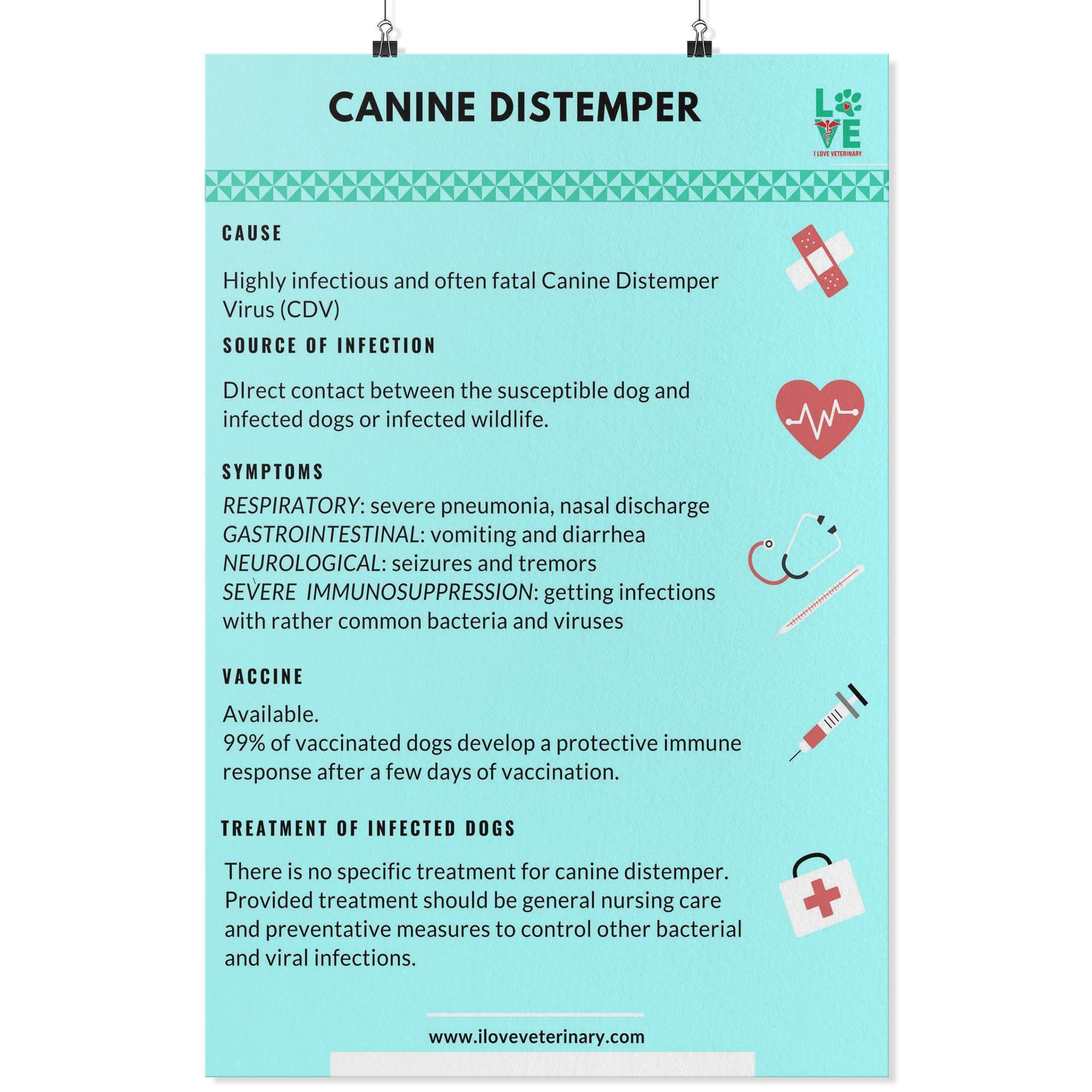 Canine Distemper Poster