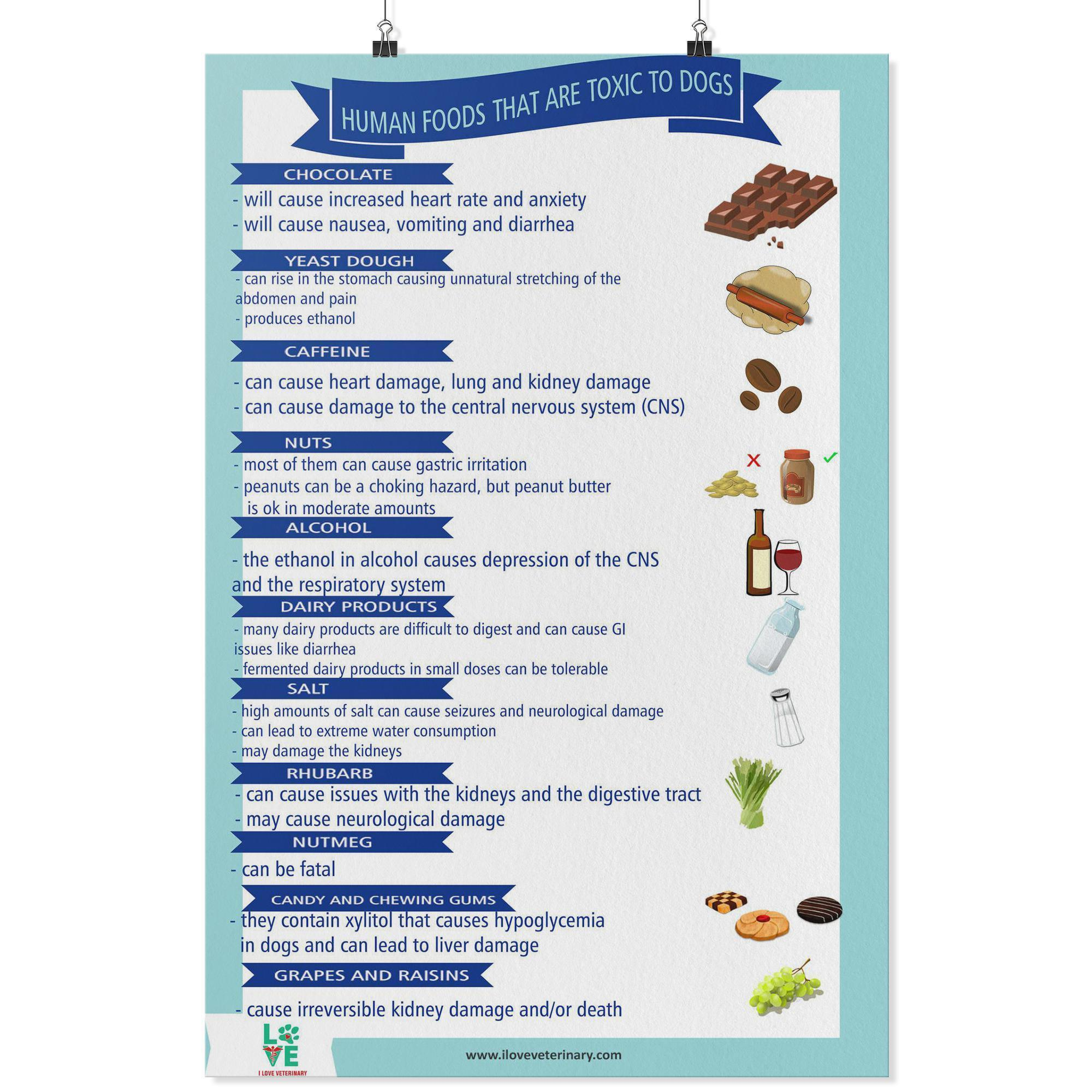 Human Foods that are Toxic to Pets Poster-Posters 2-I love Veterinary