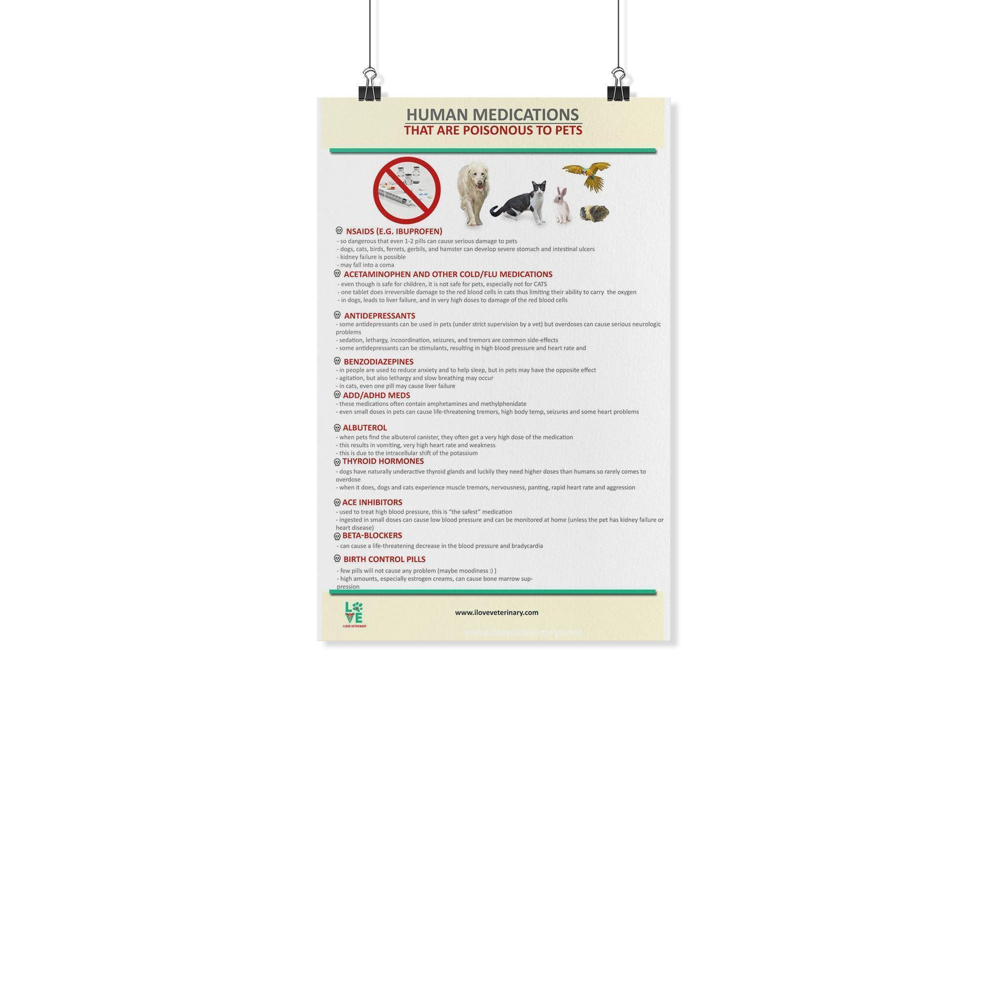 Human Medications that are Poisonous to Pets Poster-Posters 2-I love Veterinary