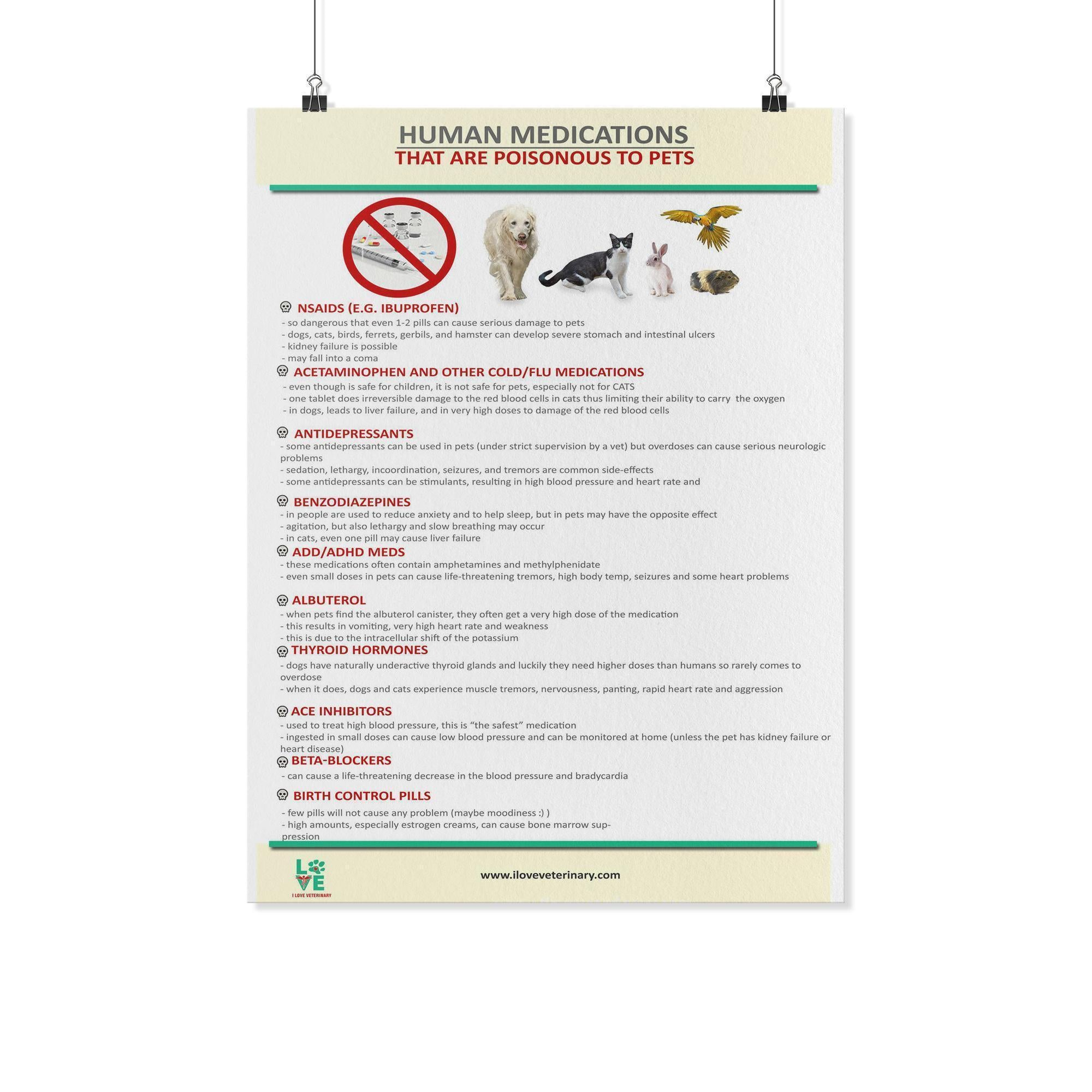 Human Medications that are Poisonous to Pets Poster