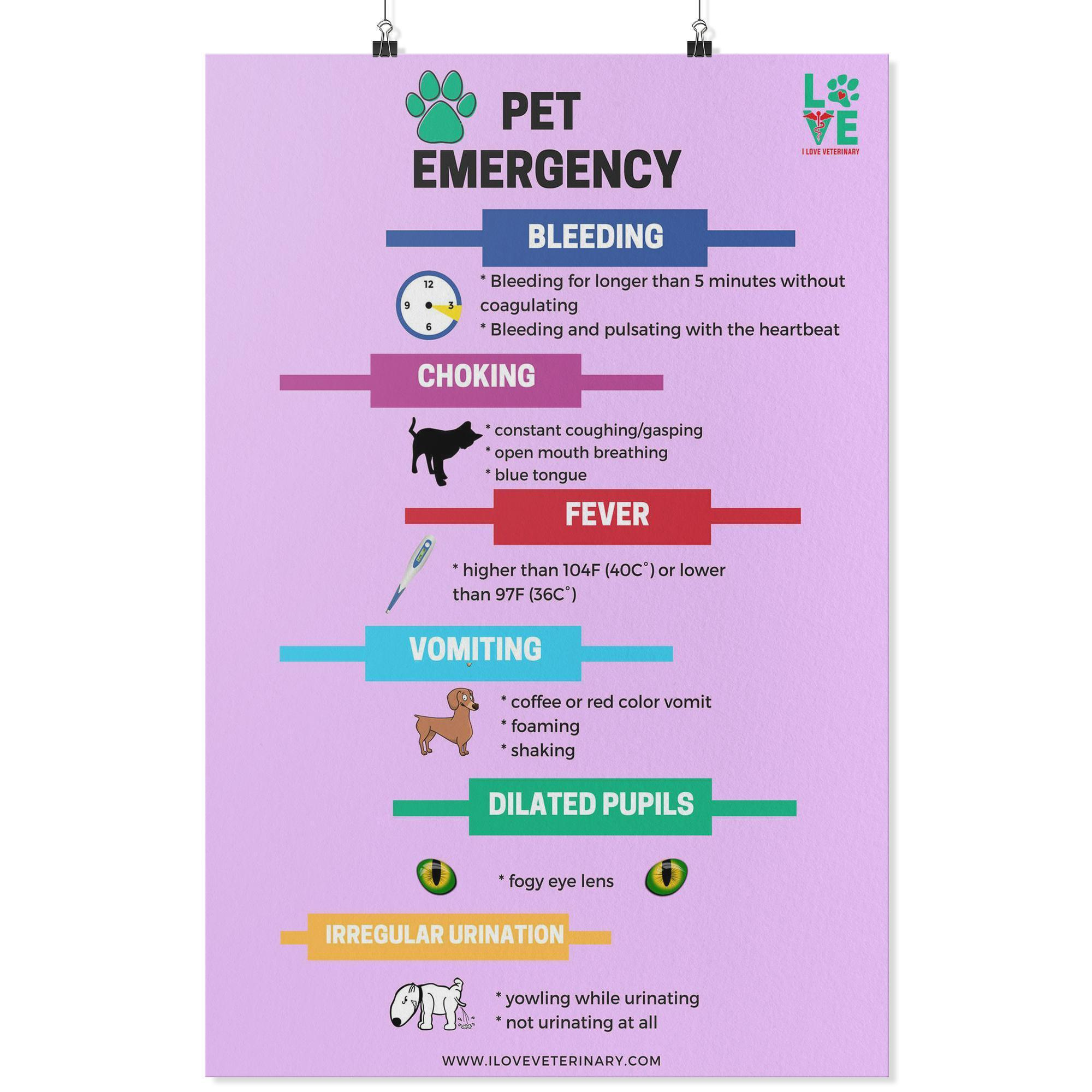 Pet Emergency Poster-Posters 2-I love Veterinary