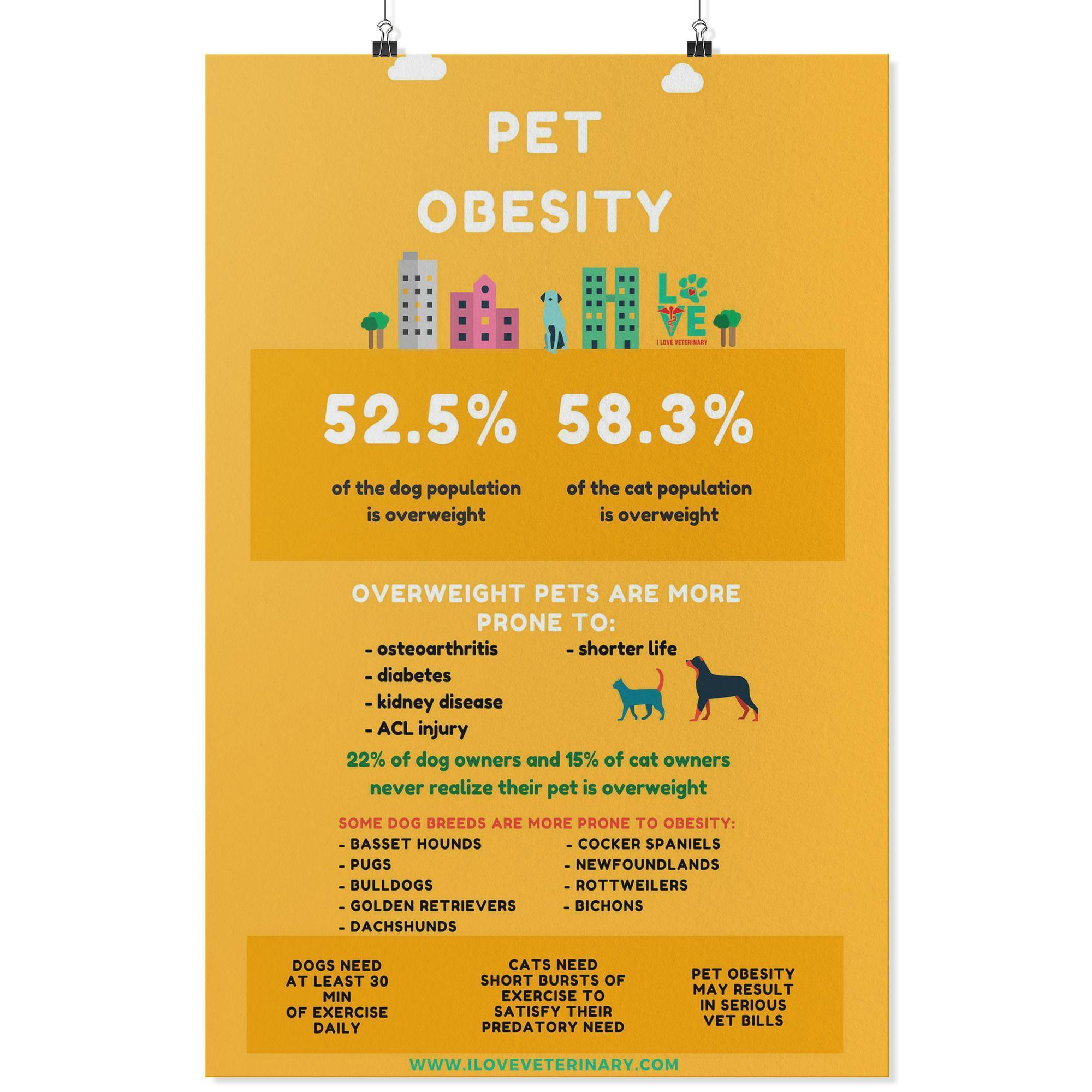 Pet Obesity Poster-Posters 2-I love Veterinary