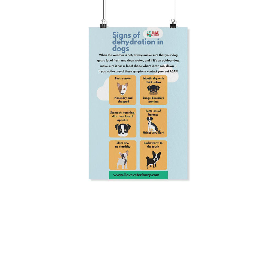 Signs of Dehydration in Dogs Poster-Posters 2-I love Veterinary
