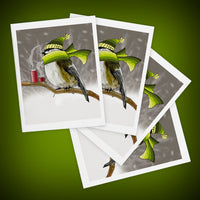 Chilladee the Chickadee Greeting Cards - Set of Four - Yay for Fidget Art!