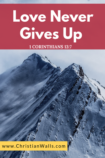 1 Corinthians 13 7 Love never gives up picture print poster bible verse