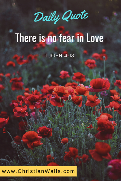 1 John 4 18 There is no fear in love picture print poster bible verse