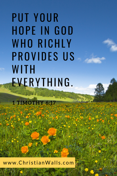 1 Timothy 6 17 Put your hope in God who richly provides us with everything picture print poster bible verse