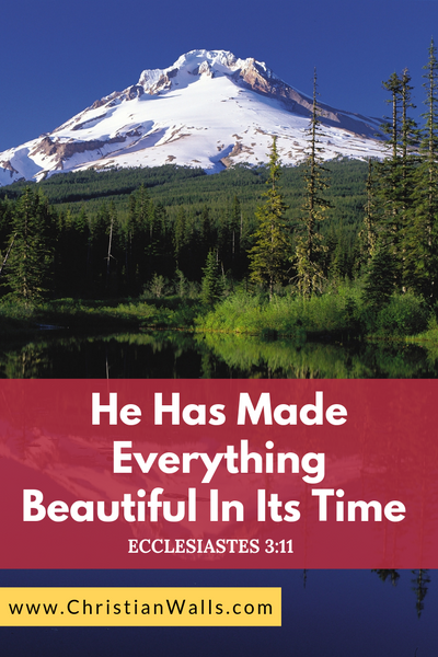 Ecclesiastes 3 11 He has made everything beautiful in its time picture print poster bible verse