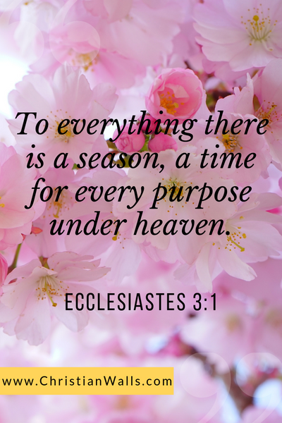 Ecclesiastes 3 1 To everything there is a season, a time for every purpose under heaven picture print poster bible verse