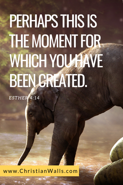 Esther 4 14 Perhaps this is the moment for which you have been created picture print poster bible verse