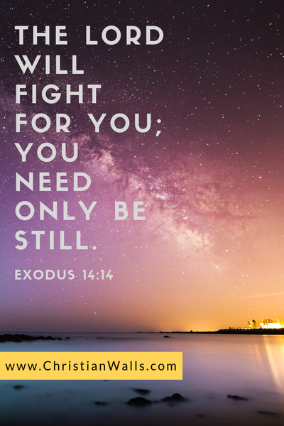 Exodus 14 14 The Lord will fight for you you need only be still picture print poster bible verse