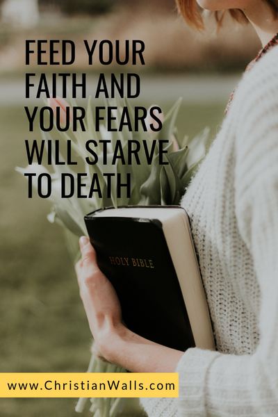 Feed your faith and fears will starve to death picture print poster christian quote