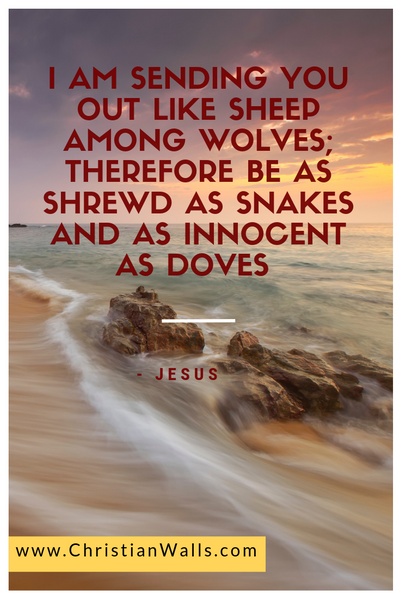 I am sending you out like sheep among the wolves therefore be as shrewd as snakes and as innocent as doves -Jesus picture print poster christian quote