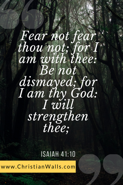 Isaiah 41 10 Fear not fear thou not for I am with thee Be not dismayed for I am thy God I will strengthen thee picture print poster bible verse