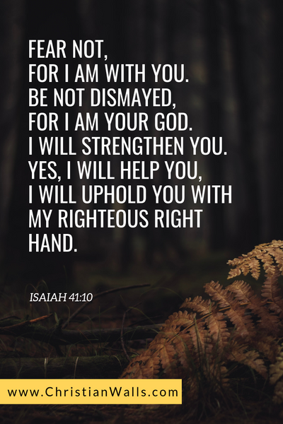 Isaiah 41 10 Fear not, for I am with you. Be not dismayed,  for I am your God. I will strengthen you. Yes, I will help you, I will uphold you with my righteous right hand picture print poster bible verse
