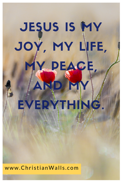 Jesus is my joy my life my peace and my everything picture print poster christian quote